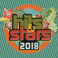 Various Artists - Hits & Stars Winter 2018
