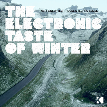 Various Artists - The Electronic Taste of Winter (Tasty & Deep Tech-House & Techno Slices [Explicit])