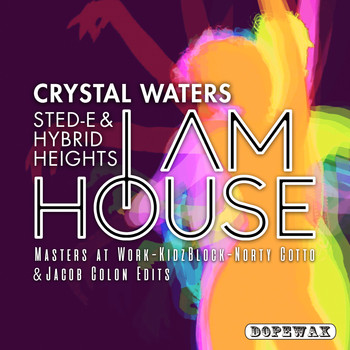 Crystal Waters & Sted-E & Hybrid Heights - I Am House (Explicit)