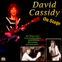 David Cassidy - On Stage