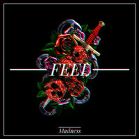 Madness - Feel
