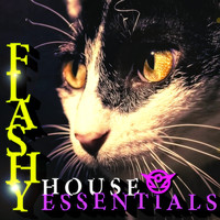 The Sektorz - Flashy House Essentials