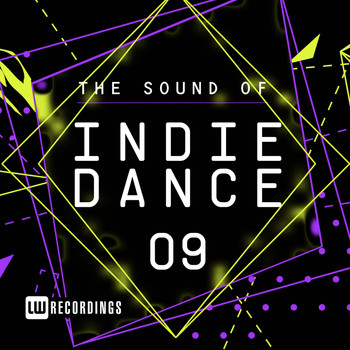 Various Artists - The Sound Of Indie Dance, Vol. 09 (Explicit)