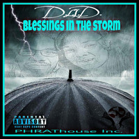 D.L.I.D. - Blessings in the Storm