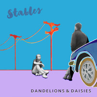 Stables - Dandelions & Daisies