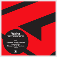 Waitz - What Would We Do