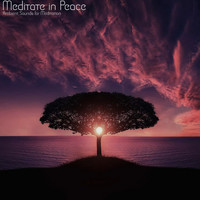 Ambient Sounds for Meditation with Meditation Relaxation Club and Asian Zen Spa Music Meditation - Meditate in Peace