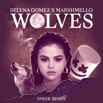 Selena Gomez - Wolves (Sneek Remix)