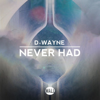 D-Wayne - Never Had