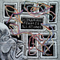 Screaming Females - I'll Make You Sorry - Single