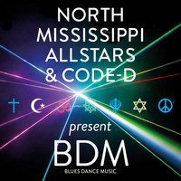 North Mississippi Allstars - BDM Blues Dance Music (Explicit)