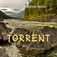 Sounds of Beautiful World - Flowing Water: Torrent (Nature Sounds for Relaxation, Meditation, Healing & Sleep)