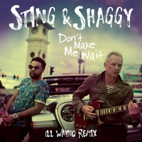 Sting - Don't Make Me Wait (iLL Wayno Remix)