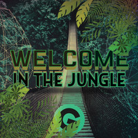 Rich Knochel - Welcome In The Jungle