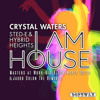 Crystal Waters & Sted-E & Hybrid Heights - I Am House (The Remixes)