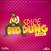 Spice - Siddung - Single (Explicit)