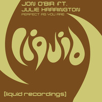 Jon O'Bir - Perfect As You Are (feat. Julie Harrington)