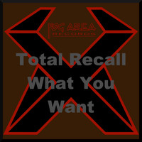 Total Recall - Total Recall - What You Want (Explicit)