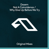 Dosem - Not A Coincidence / Why Give Up Before We Try