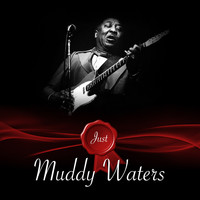 Muddy Waters - Just - Muddy Waters