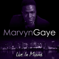 Marvin Gaye - Live In Miami