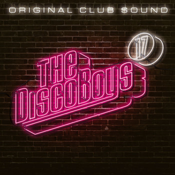 Various Artists - The Disco Boys, Vol. 17