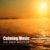Various Artists - Calming Music for Stress Reduction