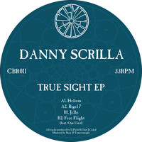 Danny Scrilla - True Sight
