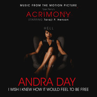 "Andra Day - I Wish I Knew How It Would Feel to Be Free (From Tyler Perry's ""Acrimony"")"