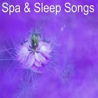 White Noise Babies, Sleep Sounds of Nature, Spa Relaxation & Spa - 12 Spa and Sleep Rain Tracks