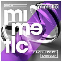 David Herrero - Faithful EP