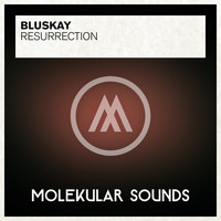 Bluskay - Resurrection