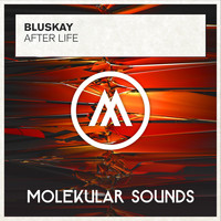 Bluskay - After Life