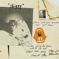 Stephen Malkmus & The Jicks - Shiggy