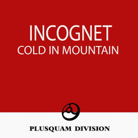 Incognet - Cold in Mountain