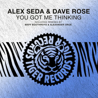 Alex Seda & Dave Rose - You Got Me Thinking