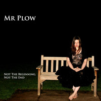 Mr Plow - Not The Beginning, Not The End