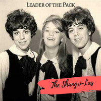 The Shangri-Las - Leader of the Pack