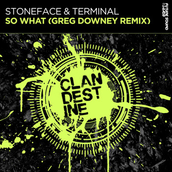 Stoneface & Terminal - So What (Greg Downey Remix)