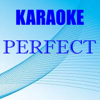Leopard Powered - Perfect (Karaoke version - Originally performed by Ed Sheeran)