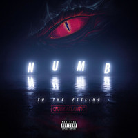 Chase Atlantic - Numb to the Feeling (Explicit)