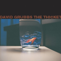 David Grubbs - The Thicket