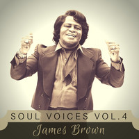 James Brown - Soul Voices Vol. 4
