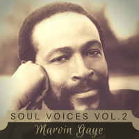Marvin Gaye - Soul Voices Vol. 2