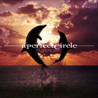 A Perfect Circle - So Long, And Thanks For All The Fish (Explicit)