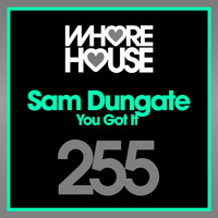 Sam Dungate - You Got It