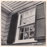 Beach Fossils - What a Pleasure
