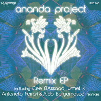 Ananda Project - Remix EP