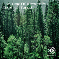 The Time Of Meditation - The Great Forest