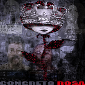 The King - Concreto Rosa